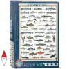 EUROGRAPHICS 6000-0312