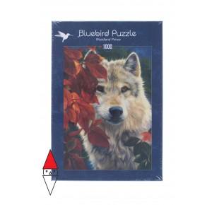 , , , PUZZLE ANIMALI BLUEBIRD LUPI WOODLAND PRINCE 1000 PZ