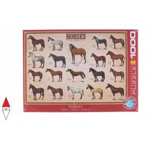 , , , PUZZLE ANIMALI EUROGRAPHICS CAVALLI HORSES 1000 PZ