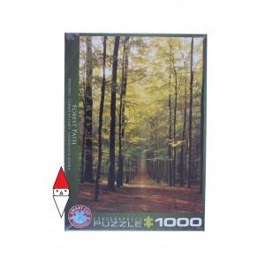 , , , PUZZLE PAESAGGI EUROGRAPHICS BOSCHI E FORESTE FOREST PATH 1000 PZ