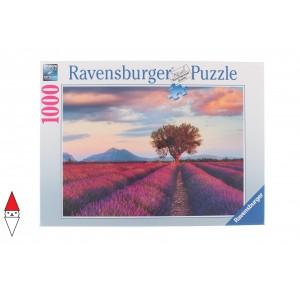 RAVENSBURGER 16724