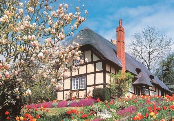 THE HOUSE OF PUZZLES, The-House-of-Puzzles-2643, 5060002002643, PUZZLE PAESAGGI THE HOUSE OF PUZZLES CAMPAGNA FIORI DI APRILE 500 PZ