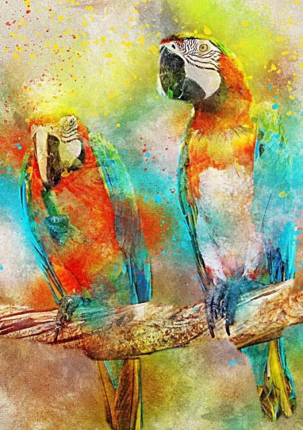 BLUEBIRD, BLUEBIRD-PUZZLE-70032, 3663384700323, PUZZLE ANIMALI BLUEBIRD PAPPAGALLI PARROTS 1000 PZ