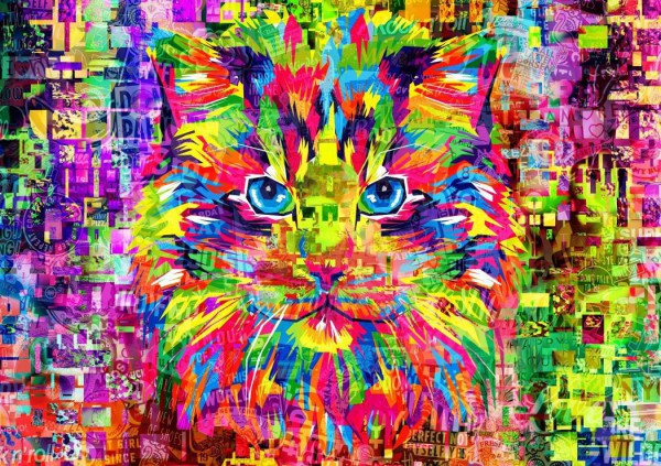 BLUEBIRD, BLUEBIRD-PUZZLE-70220, 3663384702204, PUZZLE ANIMALI BLUEBIRD GATTI WONDERFUL CAT 1000 PZ