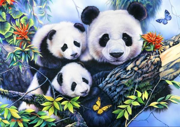 BLUEBIRD, BLUEBIRD-PUZZLE-70079, 3663384700798, PUZZLE ANIMALI BLUEBIRD PANDA PANDA FAMILY 1000 PZ