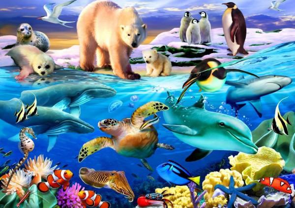 BLUEBIRD, BLUEBIRD-PUZZLE-70288, 3663384702884, PUZZLE ANIMALI BLUEBIRD ANIMALI VARI OCEANS OF LIFE 1000 PZ