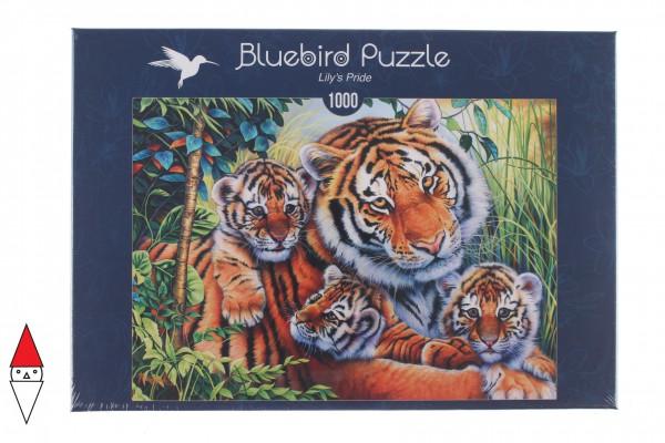 BLUEBIRD, BLUEBIRD-PUZZLE-70080, 3663384700804, PUZZLE ANIMALI BLUEBIRD TIGRI LILYS PRIDE 1000 PZ