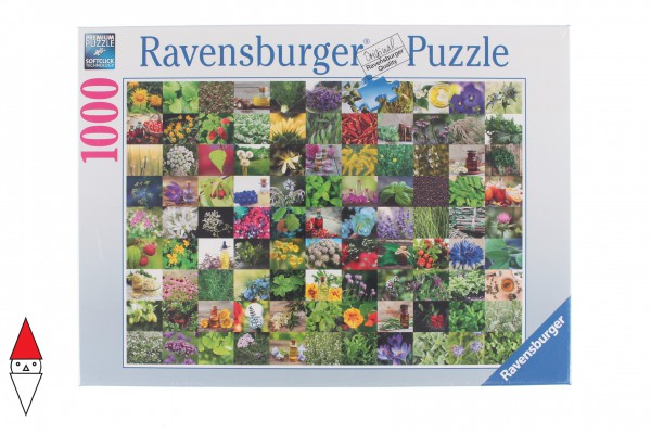 RAVENSBURGER 15991
