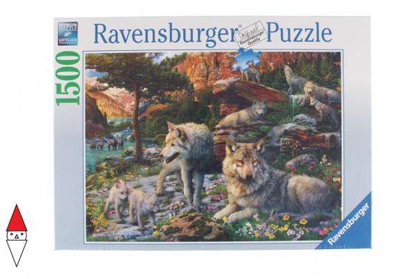RAVENSBURGER 16598