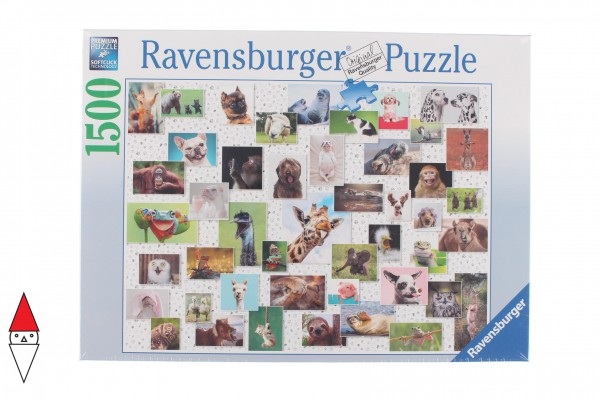 RAVENSBURGER 16711